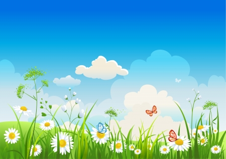 Summer positive  landscape Vector