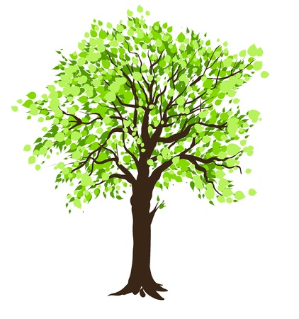 Tree Stock Vector - 20544592