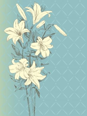 lily flower: Vintage achtergrond met lelie bloem Stock Illustratie