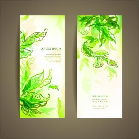 초록: 텍스트에 대 한 공간을 가진 추상 자연 카드 세트 일러스트