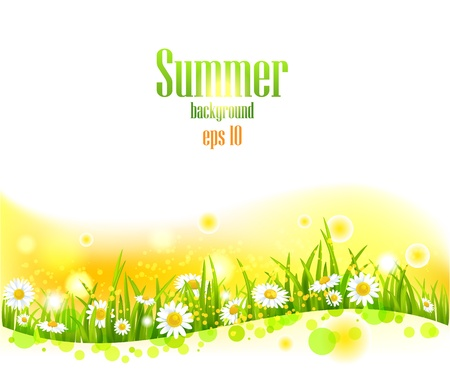 Bright summer flowers  background with space for text. Vector