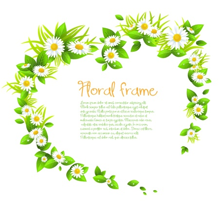 Chamomile flowers frame with space for text.