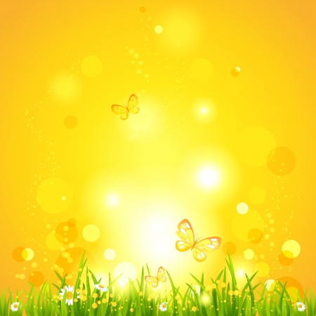 natural beauty: Hot summer evening. Nature background with space for text Illustration
