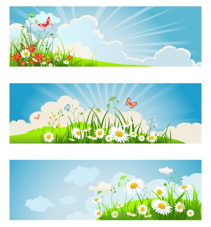 Summer floral banners with sky, clouds, chamomile and butterflies Stock Vector - 20544642