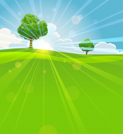 Summer landscape  with trees, green field and sun beams Stock Vector - 20544624