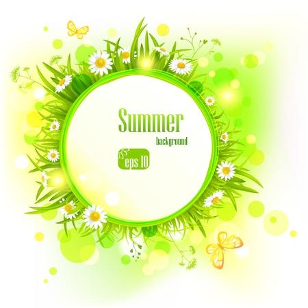 ヒナギクと夏の明るい背景。  イラスト・ベクター素材