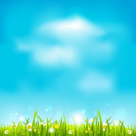 テキスト用のスペースを夏の明るい背景  イラスト・ベクター素材
