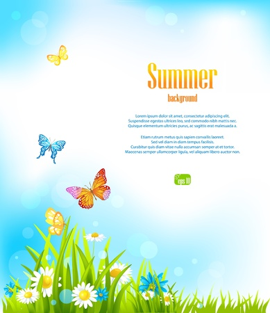 butterfly background: Summer background with space for text