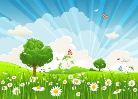 himmelsblå: Sommaren landskap med träd och äng av blommor