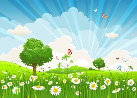 sunlight sky: Summer landscape with trees and meadow of flowers