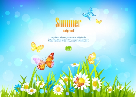 sunlight sky: Sunny day background and flowers with space for text. Illustration