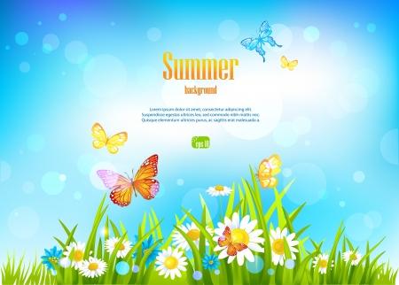 zomertuin: Zonnige dag achtergrond en bloemen met ruimte voor tekst.