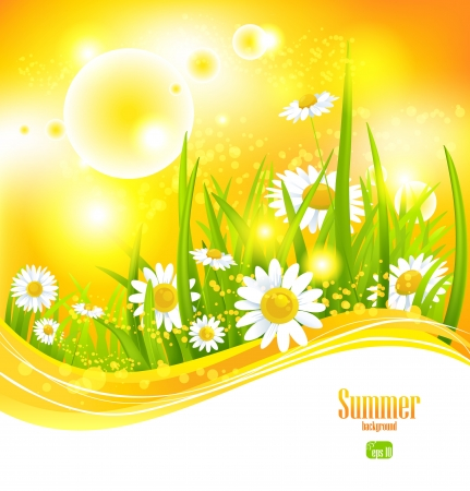 hot spring: Sunny summer background with sunlight and flowers for your design