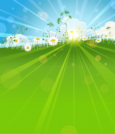 Sunny summer morning background with space for text Vector