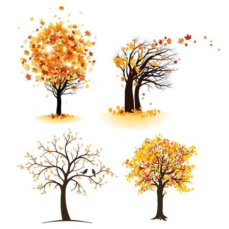 arbre automne: Ensemble d'arbre d'automne