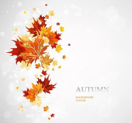 Background with autumn leaves Stock Vector - 20544778
