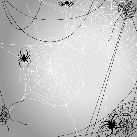 cobwebs: Background with spiders  Illustration