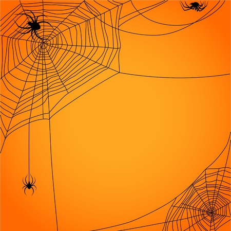 Cobweb with spiders Stock Vector - 20544742