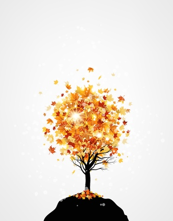 sycamore: Lonely autumn tree with space for text