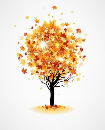Maple tree Stock Vector - 20544797