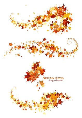 Autumn leaves design elements Illustration