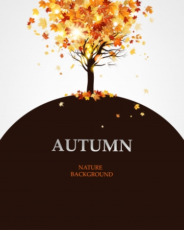 Autumn maple tree background Stock Vector - 20598667