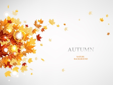 top down: Flying autumn leaves background with space for text.   Illustration
