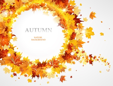 fall background: Frame with the beautiful maple leaves Illustration