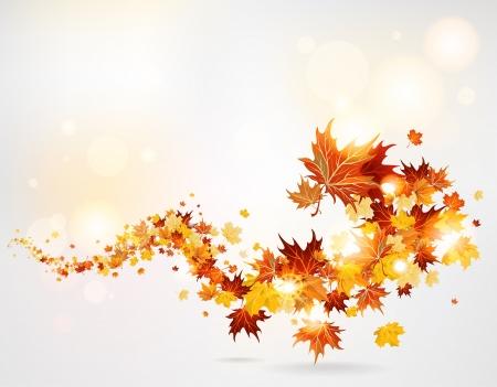 Swirl von Blättern Standard-Bild - 20598674