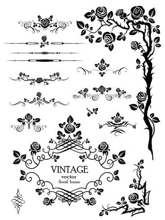 �pines: Vector elements and page decoration avec des roses Illustration