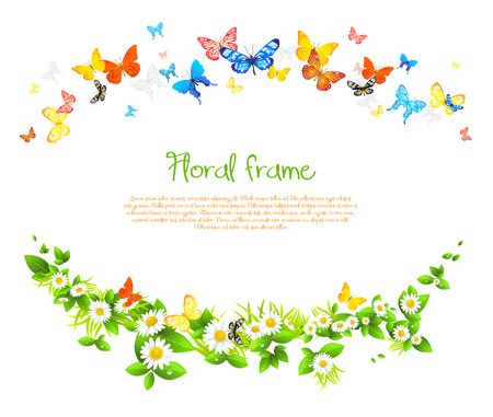 Vector frame with beautiful butterflies and daisy with space for text. Vector