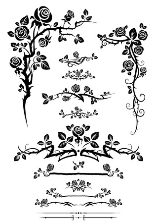 Сalligraphic floral elements set with roses. Vector