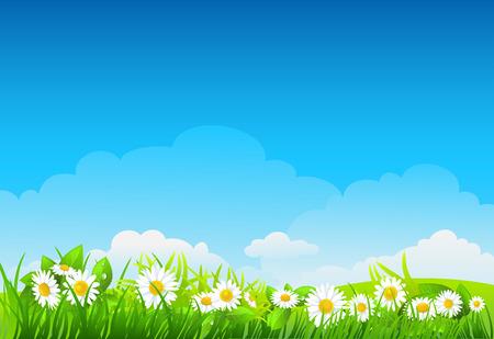 Sommer-Hintergrund mit Blumen