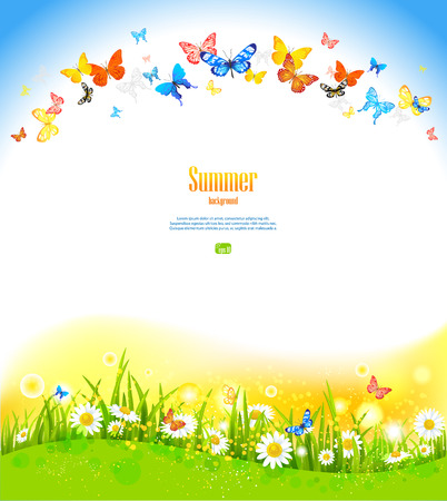 Summer background with butterflies and flowers