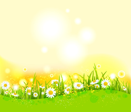 Bright summer background Illustration