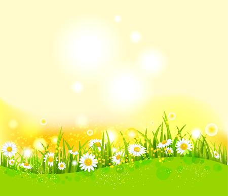 grün: Helle Sommer Hintergrund Illustration