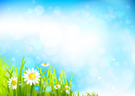 Summer background with flowers and grass. Space for text    Vector