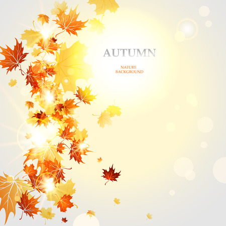 Autumnal background  with space for text Vector