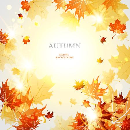 Autumn: Fondo con las hojas de arce del otoño Vectores