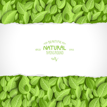 Natural background and leaves with space for text Vector