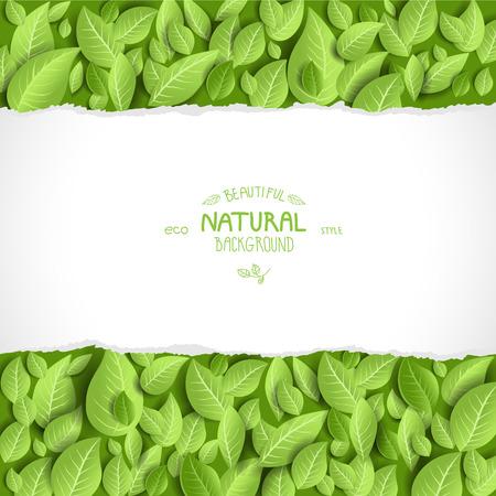 for text: Sfondo naturale e foglie con spazio per il testo