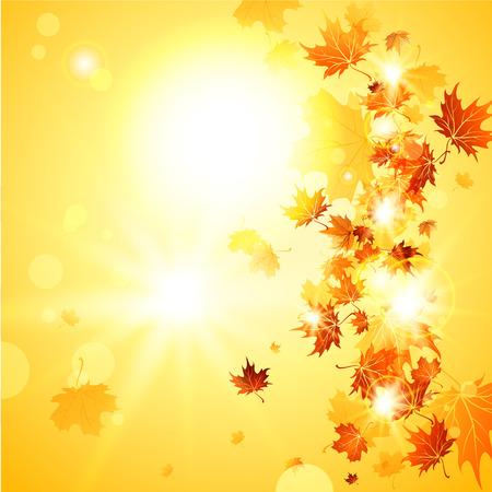 Beautiful fall background  with falling leaves with place for text Vector
