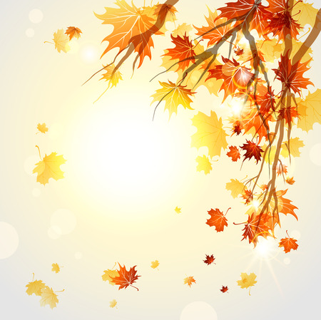 Branches with autumn leaves with space for text