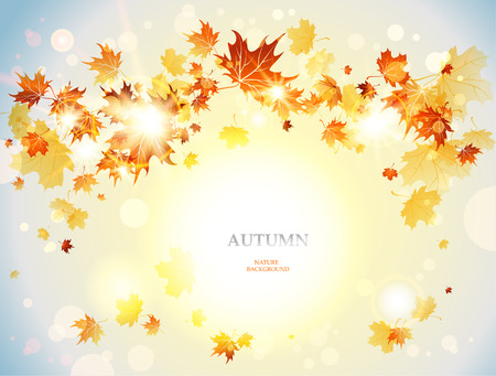Positive background with autumn leaves. Place for text  Vector