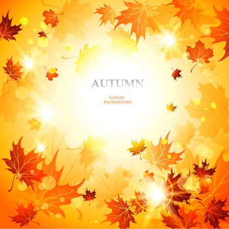 autumn background: Bright autumn  background with space for text