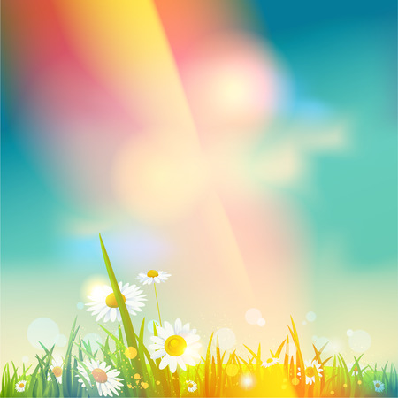 Beautiful background summer sunrise or sunset with place for text Vector