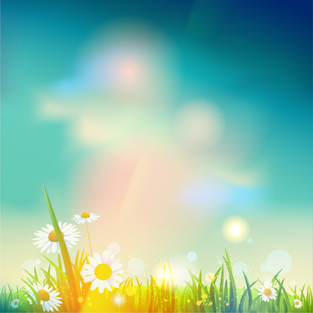 place for text: Summer sunrise or sunset background with place for text