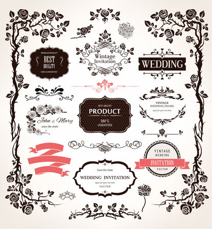 Vector design elements and calligraphic decorations for wedding and holiday event