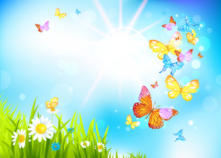 Vector summer background with flowers and butterflies. Positive summer illustration. Vector