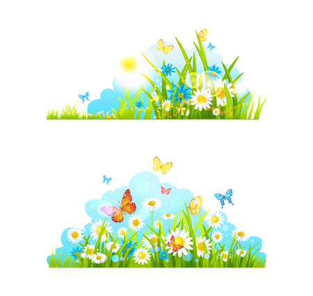 Summer design elements. Vector grass, flowers and butterflies.  Vector